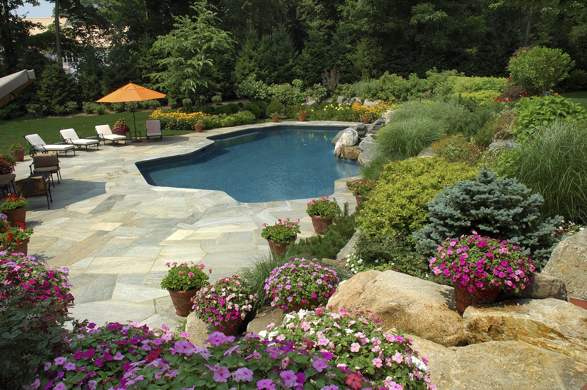 pool and landscape designs