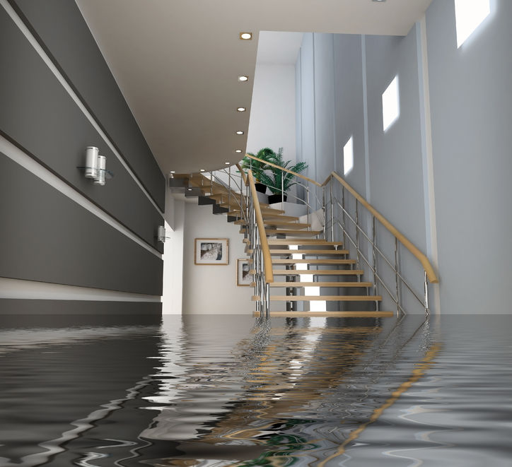 basement waterproofing contractors and services