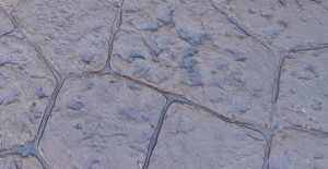 An example of  stamped concrete showing its versatility